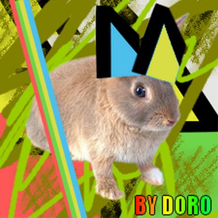 06 new order - disco coniglietto